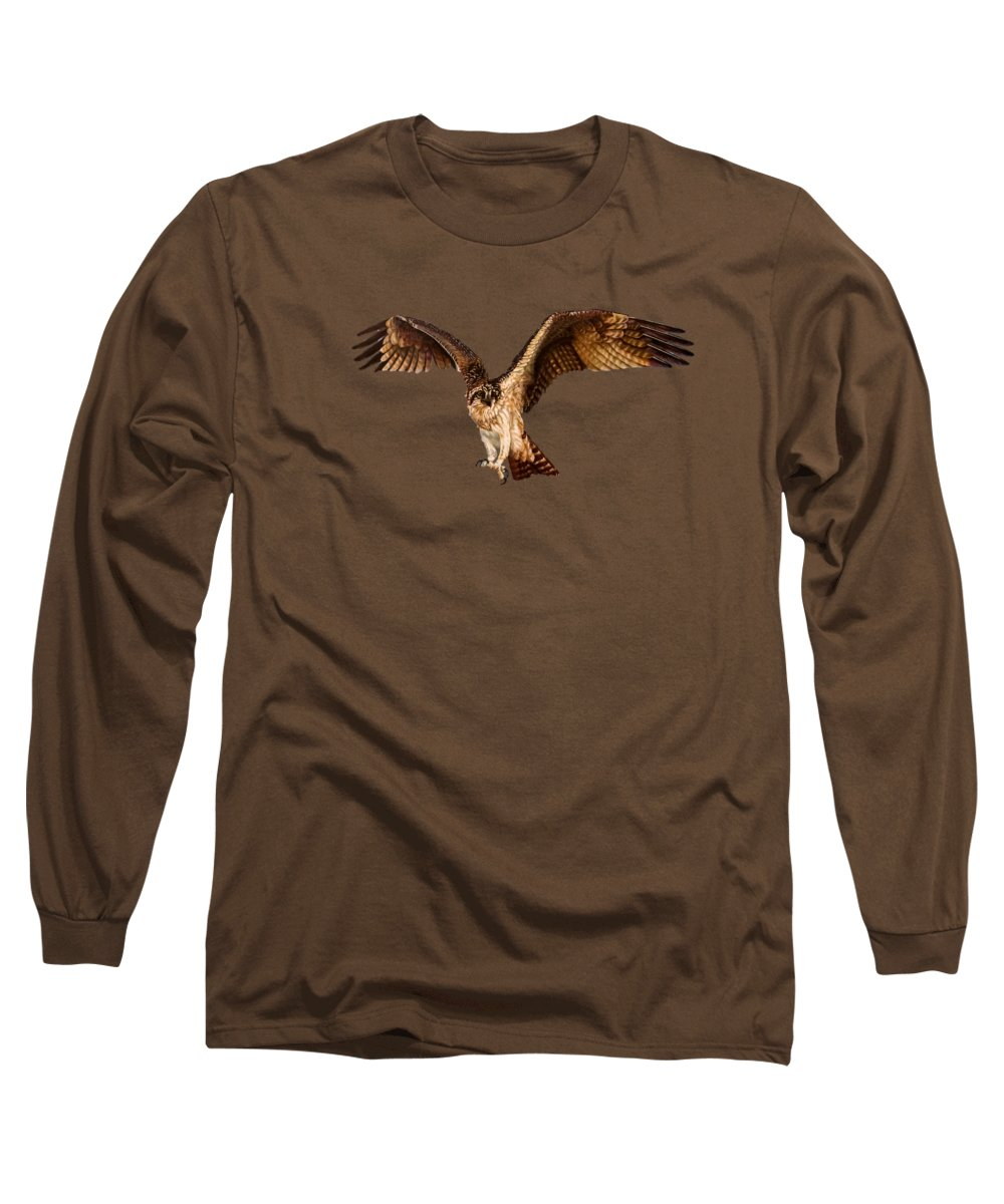 Sea Hawk Long Sleeve T-Shirt featuring the painting Osprey On The Branch by Zina Stromberg