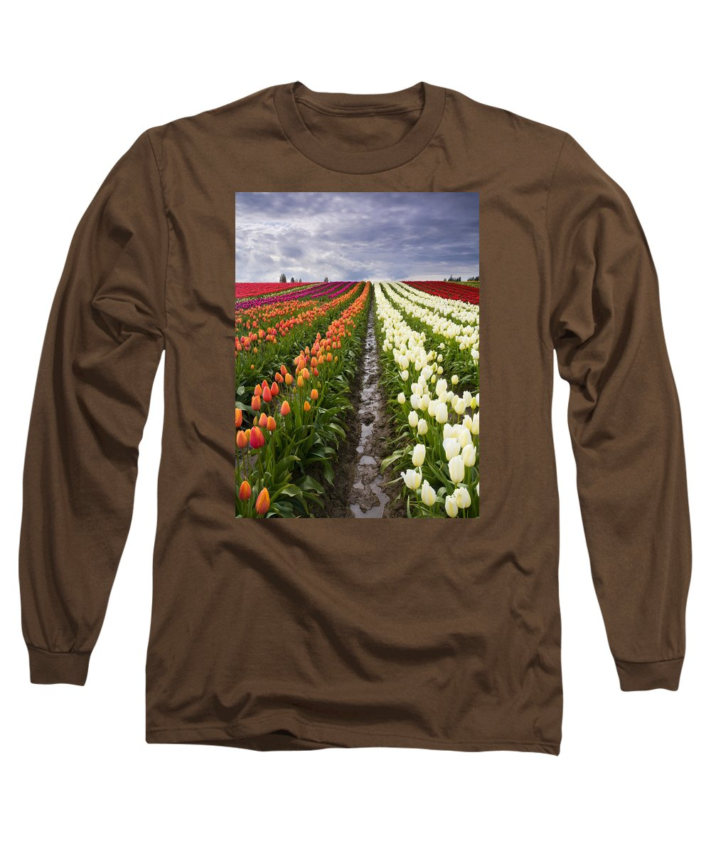 Tulips Long Sleeve T-Shirt featuring the photograph Sea Of Color by Mike Dawson