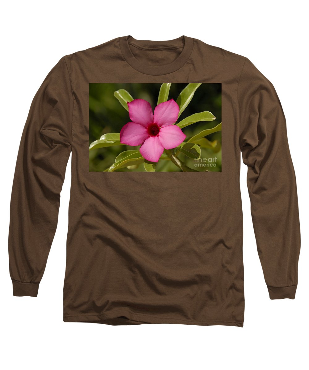 Spring Long Sleeve T-Shirt featuring the photograph Spring by David Lee Thompson