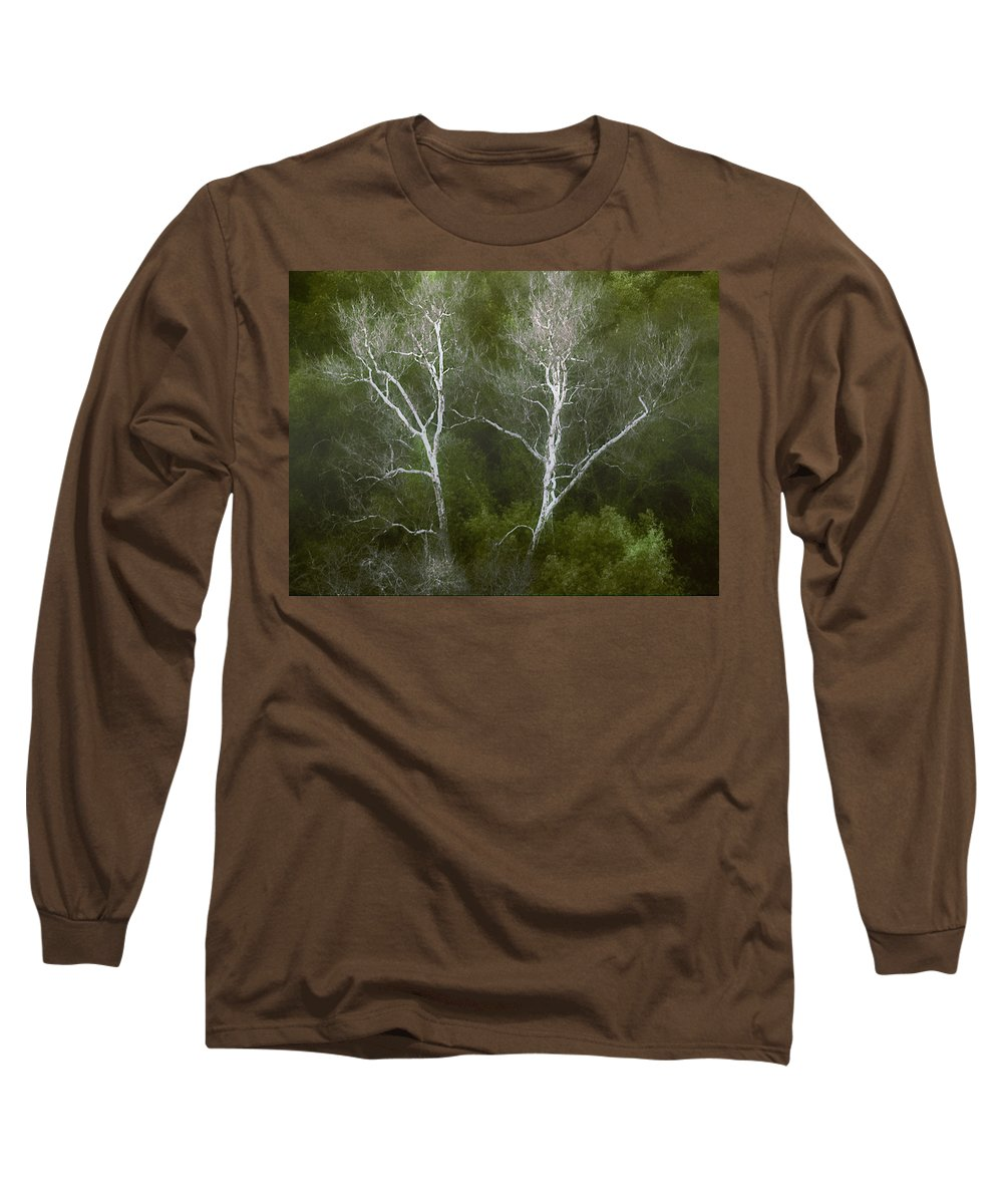 Landscape Long Sleeve T-Shirt featuring the photograph Sunol - Twins by Karen W Meyer