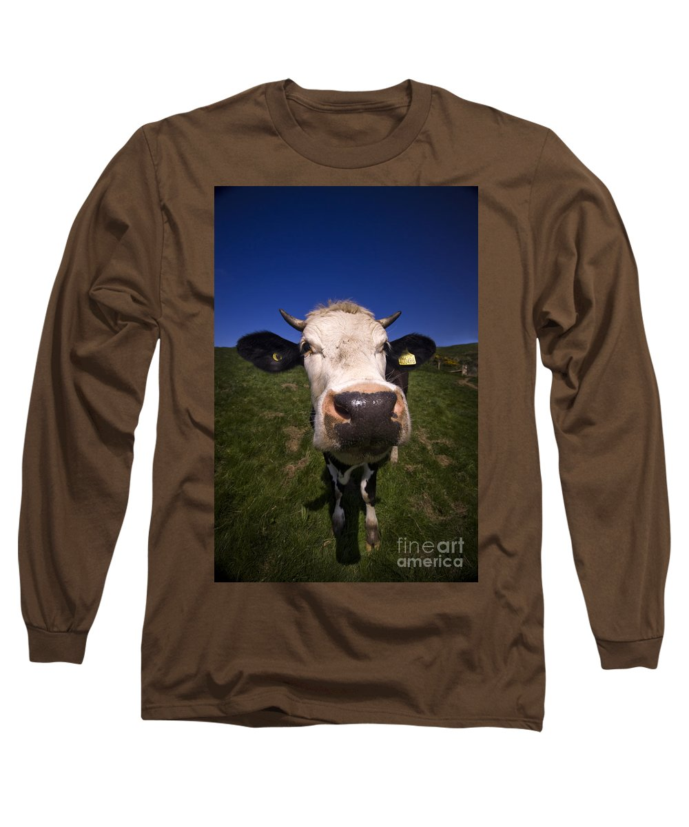 Cow Long Sleeve T-Shirt featuring the photograph The Wideangled Cow by Angel Ciesniarska