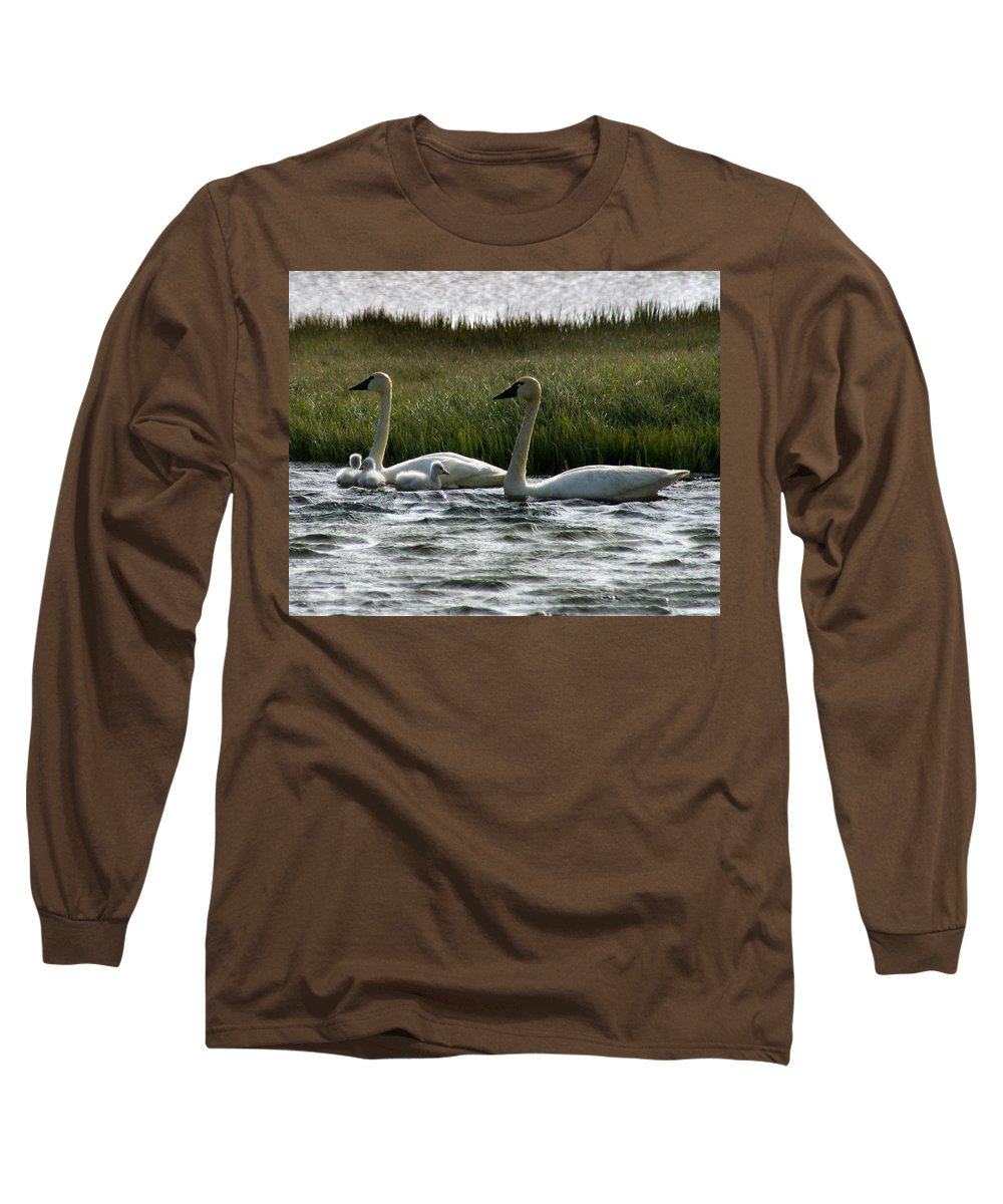 Swans Long Sleeve T-Shirt featuring the photograph Tundra Swans And Cygents by Anthony Jones
