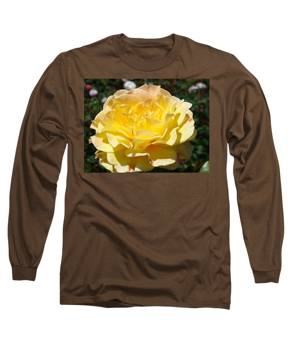 Rose Long Sleeve T-Shirt featuring the photograph Yellow Rose Sunlit Summer Roses Flowers Art Prints Baslee Troutman by Baslee Troutman