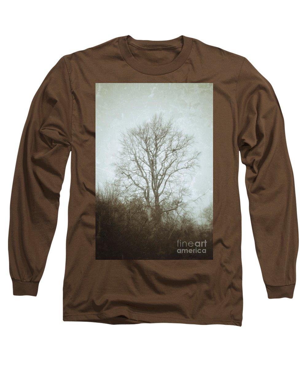 Beech Long Sleeve T-Shirt featuring the photograph Winter beech in falling snow by Paul Boizot