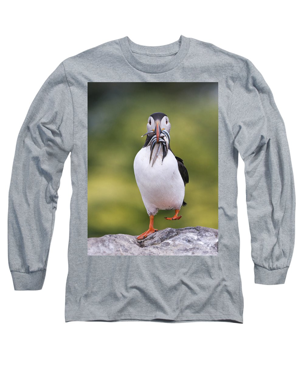 Franka Slothouber Long Sleeve T-Shirt featuring the photograph Atlantic Puffin Carrying Greater Sand by Franka Slothouber