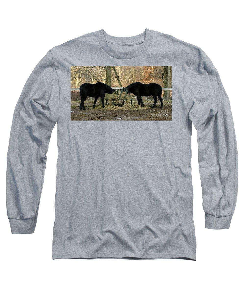 Horse Long Sleeve T-Shirt featuring the photograph Barnyard Beauties by Ann Horn