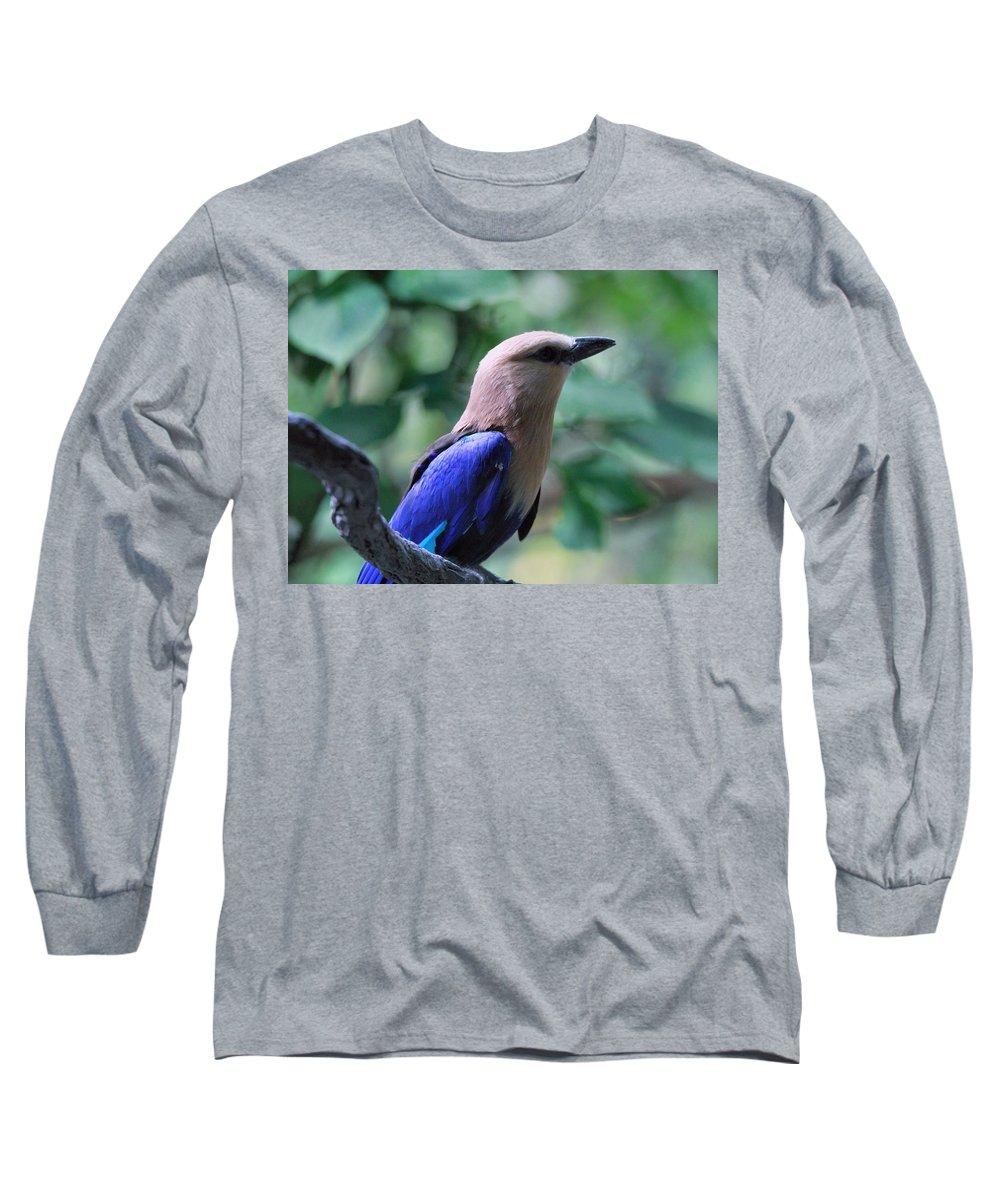 Blue-bellied Roller Bird Long Sleeve T-Shirt featuring the photograph Blue Bellied Roller by Dan Sproul