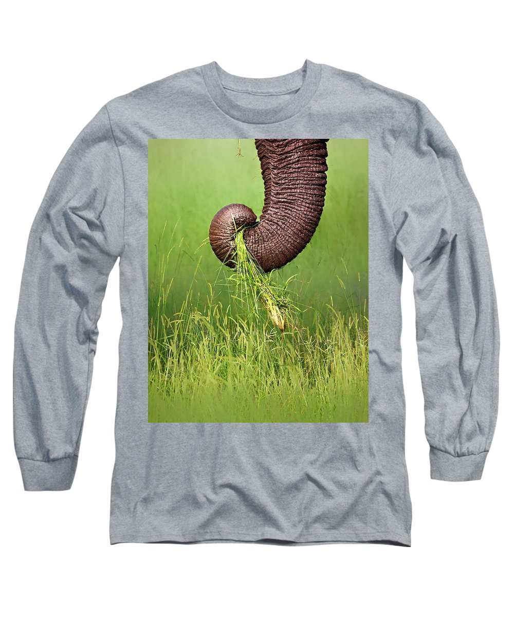 Close-up Long Sleeve T-Shirt featuring the photograph Elephant Trunk Pulling Grass by Johan Swanepoel