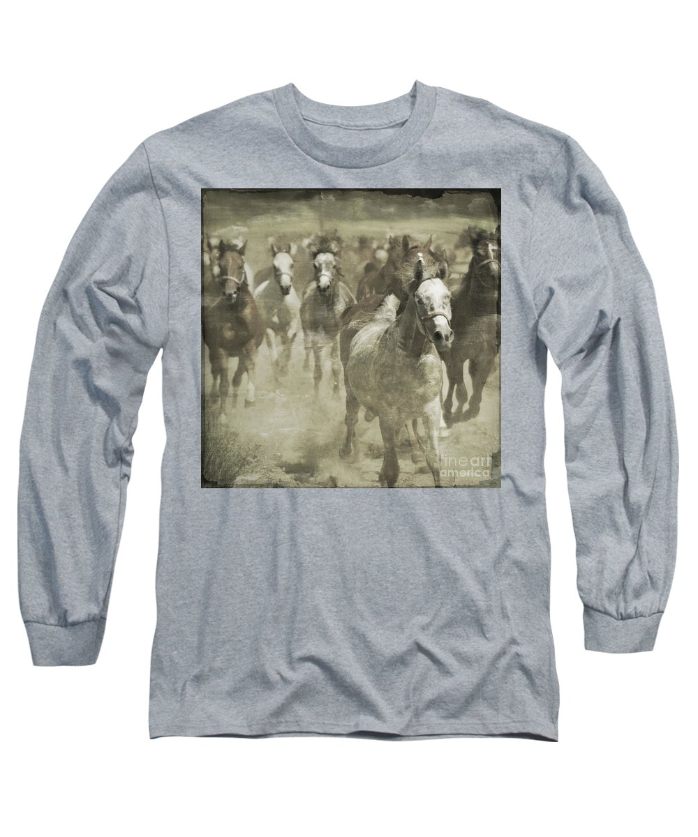 Horse Long Sleeve T-Shirt featuring the photograph The Run For Freedom by Angel Ciesniarska