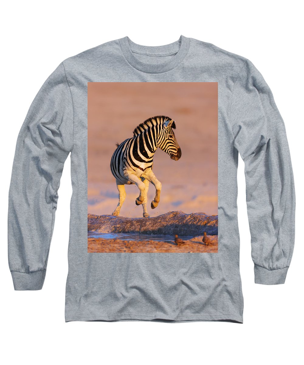 Wild Long Sleeve T-Shirt featuring the photograph Zebras Jump From Waterhole by Johan Swanepoel