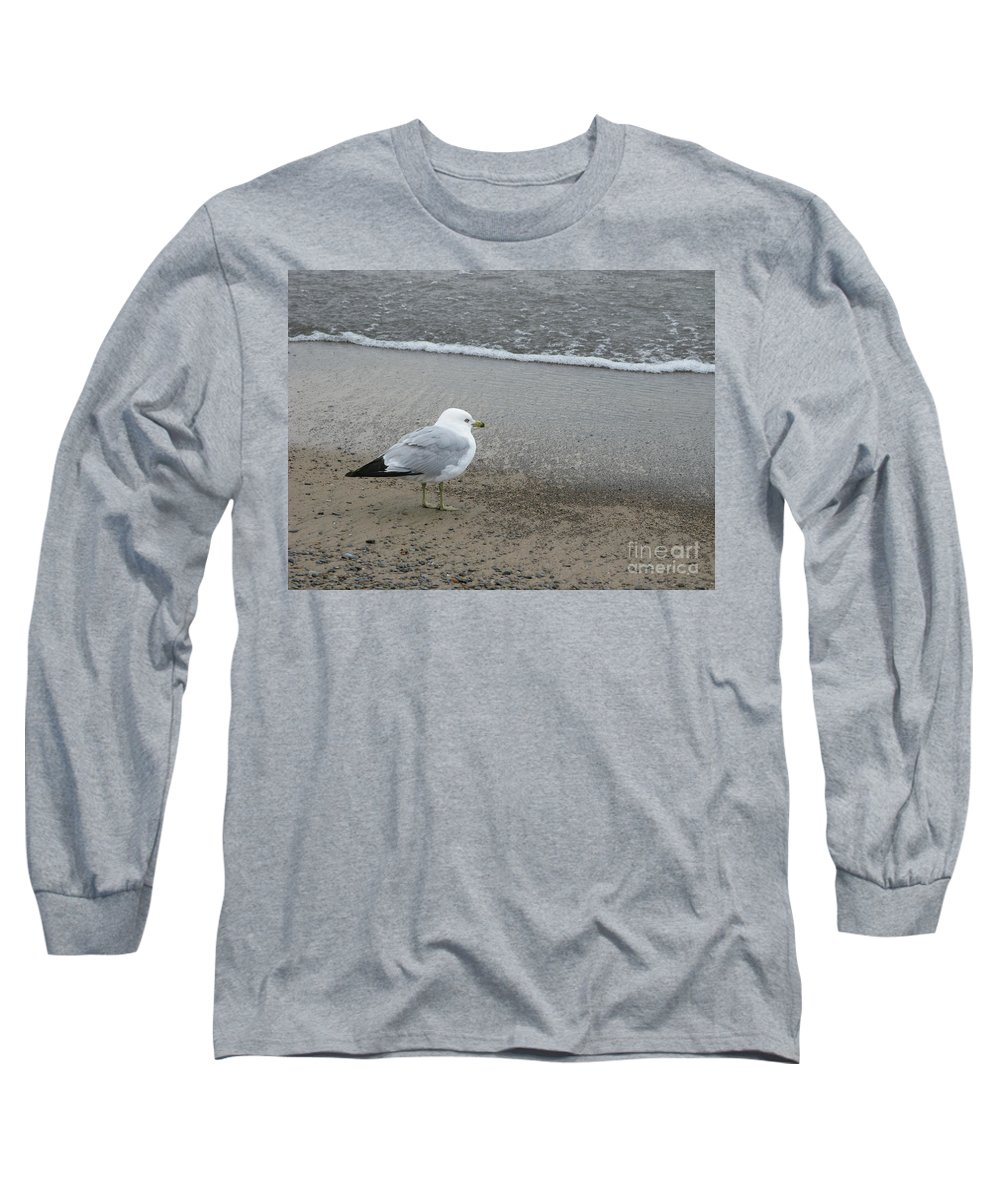 Ring-billed Gull Long Sleeve T-Shirt featuring the photograph Ring-billed Gull by Ann Horn