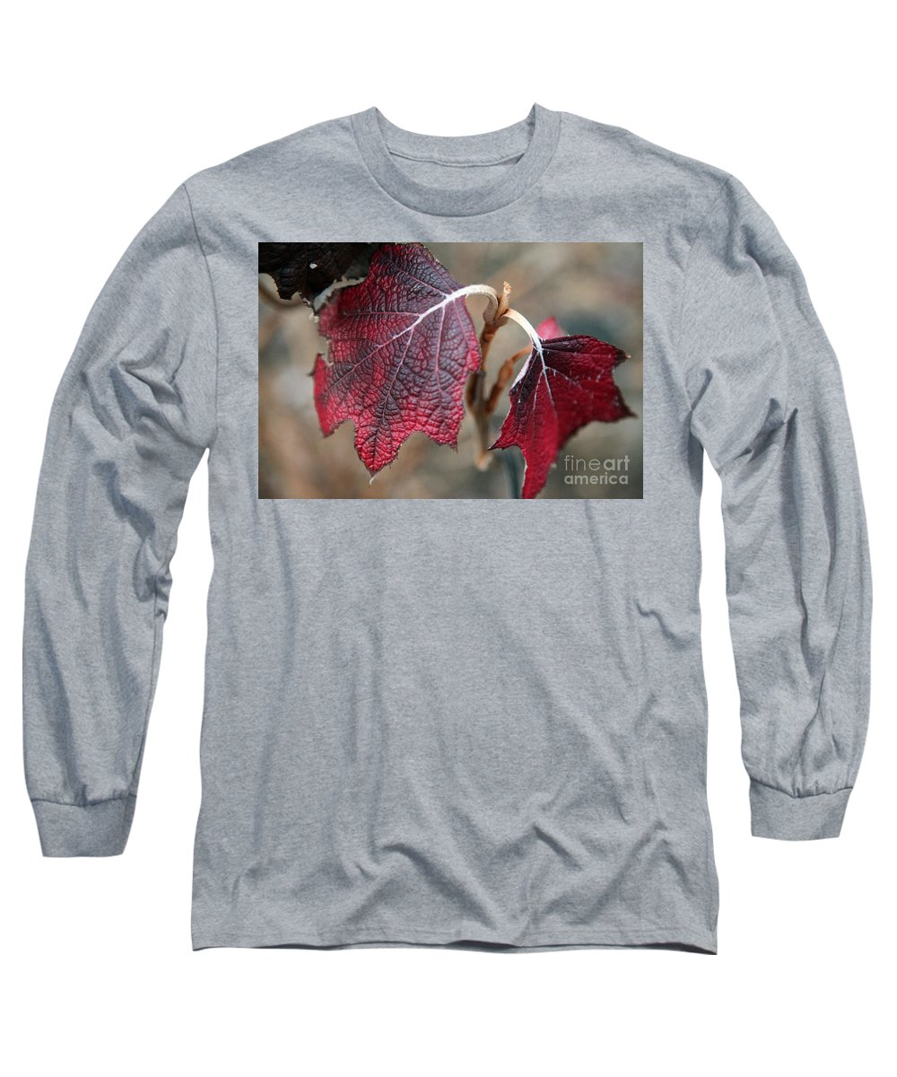 Fall Long Sleeve T-Shirt featuring the photograph Leaves by Amanda Barcon