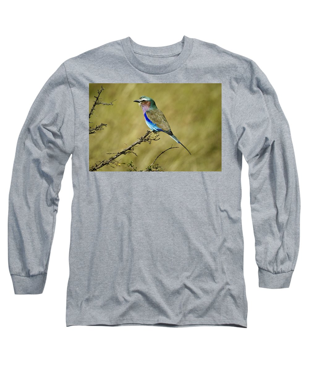 Africa Long Sleeve T-Shirt featuring the photograph Lilac-breasted Roller by Michele Burgess