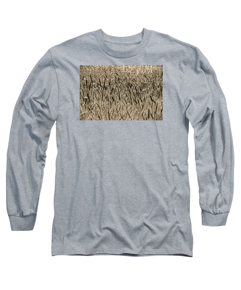 Long Sleeve T-Shirt featuring the photograph Harvest Time by Deb Cohen