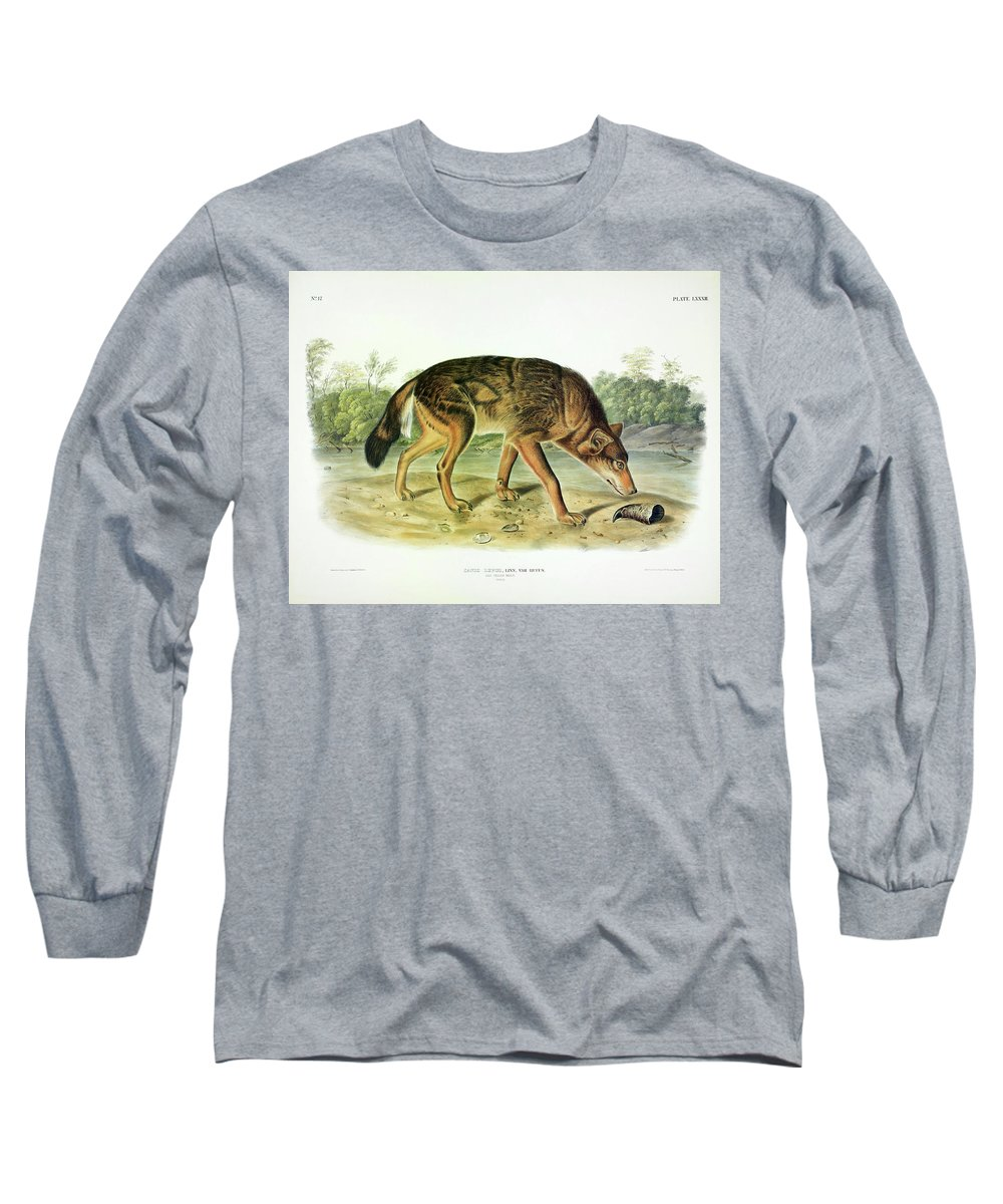 Red Texan Wolf Long Sleeve T-Shirt featuring the painting Red Texan Wolf by John James Audubon