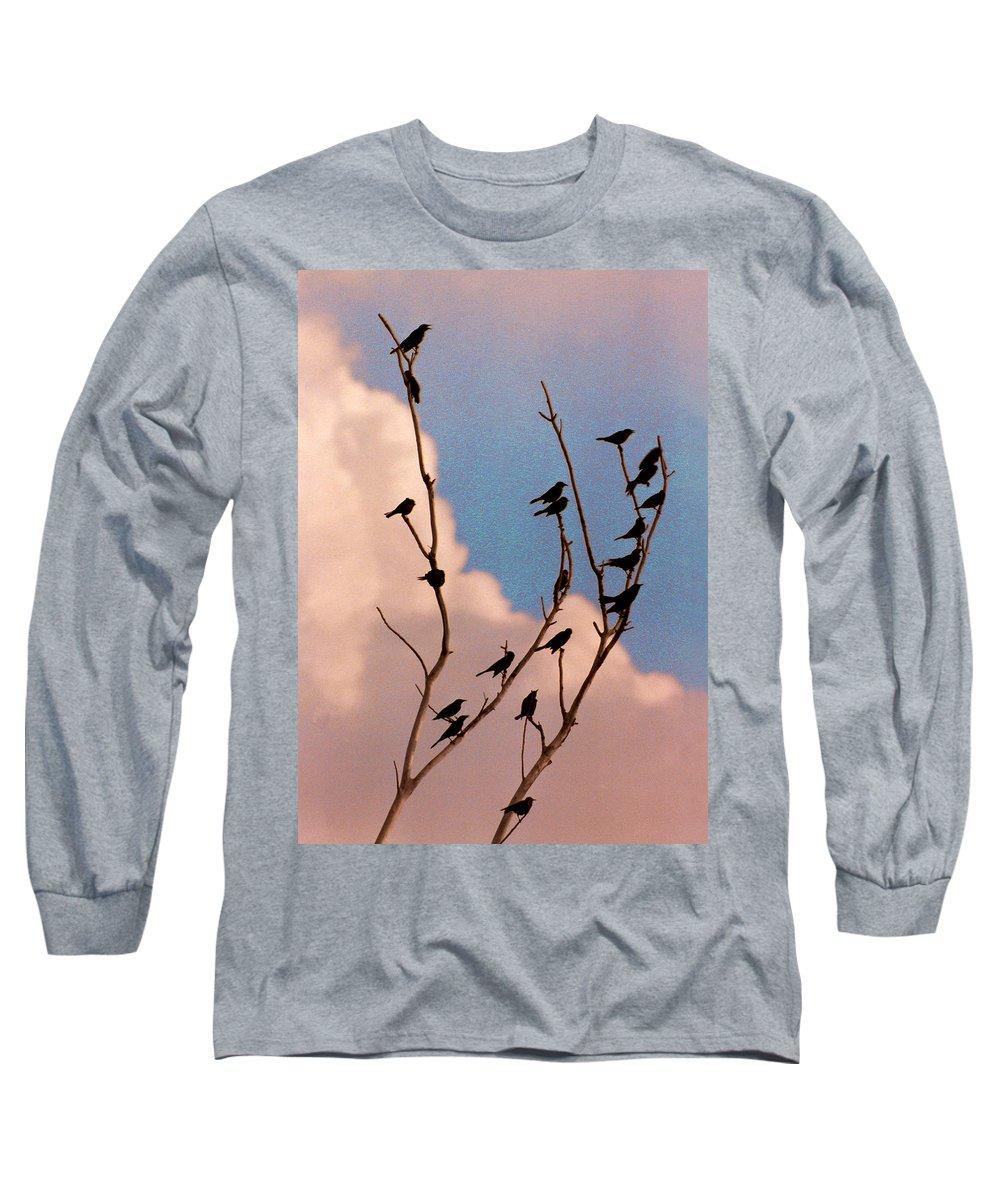 Birds Long Sleeve T-Shirt featuring the photograph 19 Blackbirds by Steve Karol