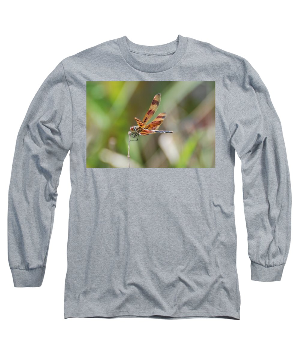 Nature Long Sleeve T-Shirt featuring the photograph Dragon Fly by Rob Hans