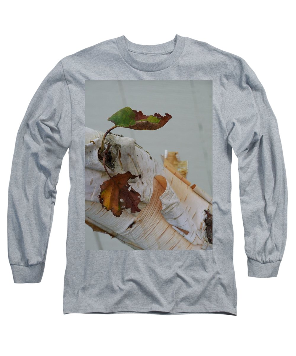 Birch Long Sleeve T-Shirt featuring the photograph A Touch Of Fall by Gale Cochran-Smith