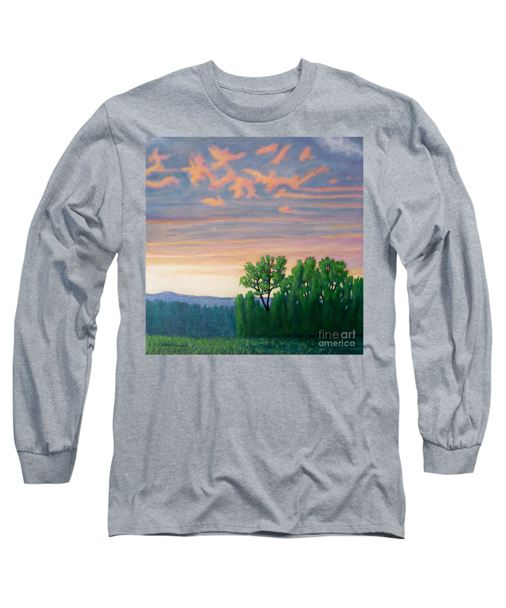 Landscape Long Sleeve T-Shirt featuring the painting Balsa Road by Brian Commerford