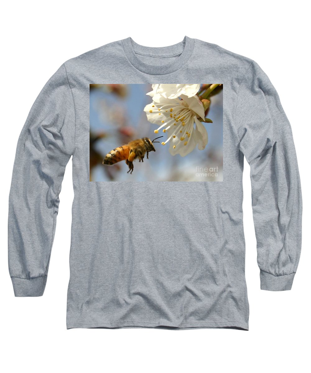 Honey Long Sleeve T-Shirt featuring the photograph Bee And A Blossom by Danny Yanai