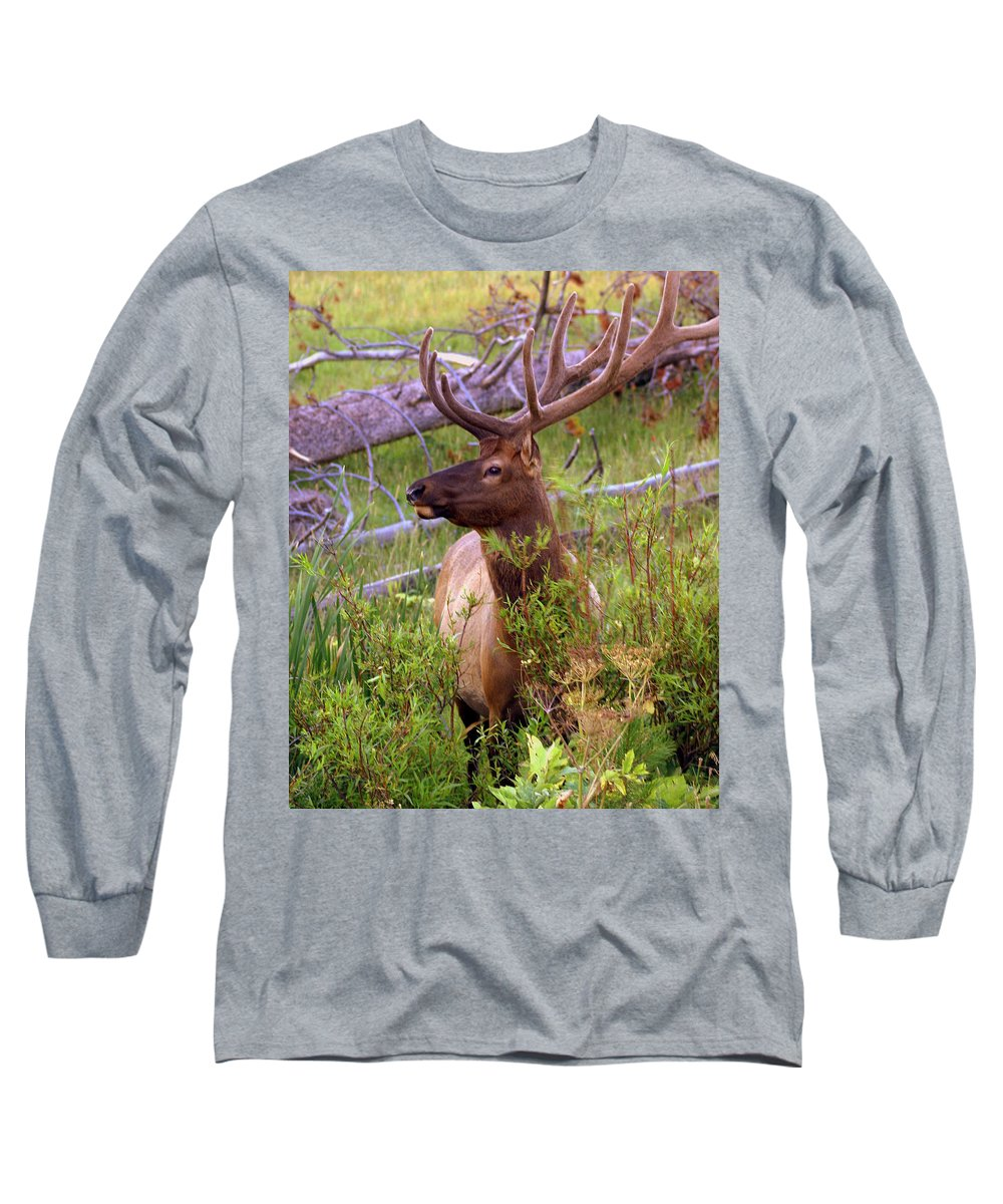Bull Elk Long Sleeve T-Shirt featuring the photograph Big Bull by Marty Koch