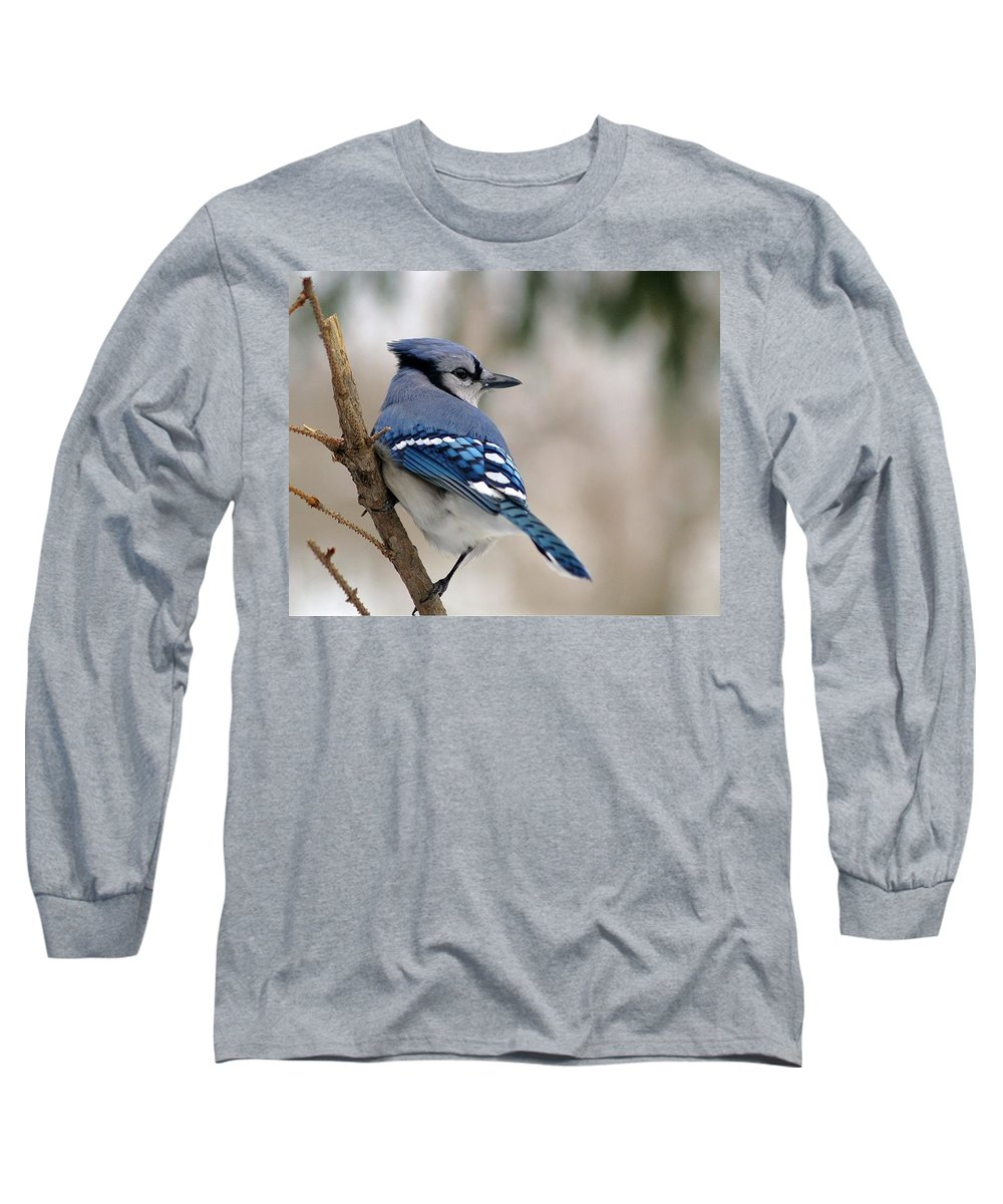 Blue Jay Long Sleeve T-Shirt featuring the photograph Blue Jay by Gaby Swanson