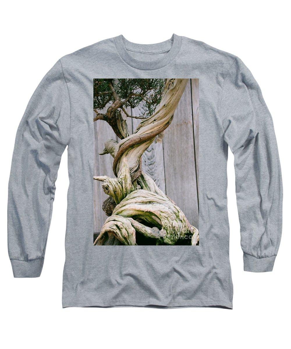 Tree Long Sleeve T-Shirt featuring the photograph Bonsai by Dean Triolo