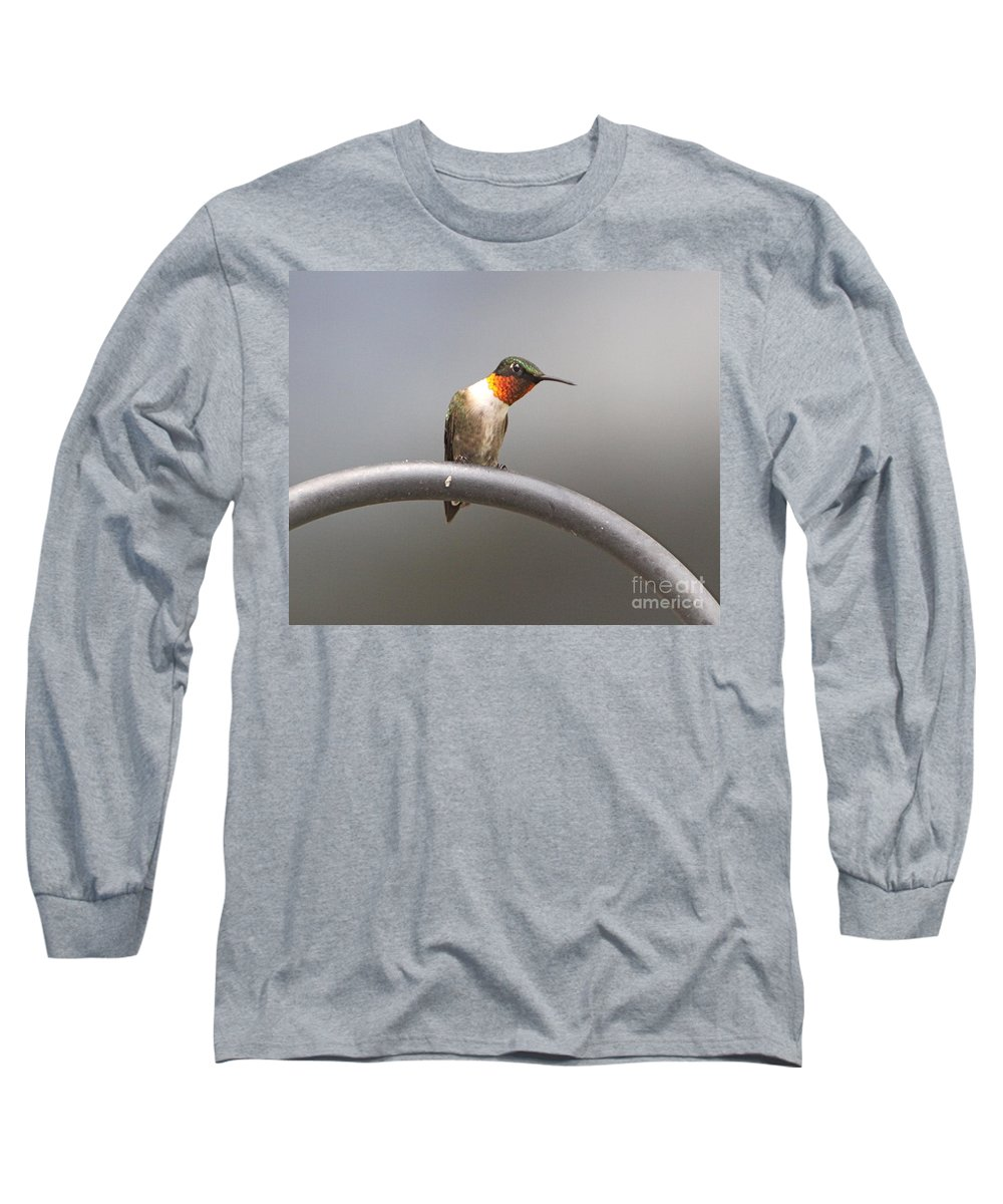 Humming Related Tags: Tulips Artwork Long Sleeve T-Shirt featuring the photograph Break Time by Robert Pearson