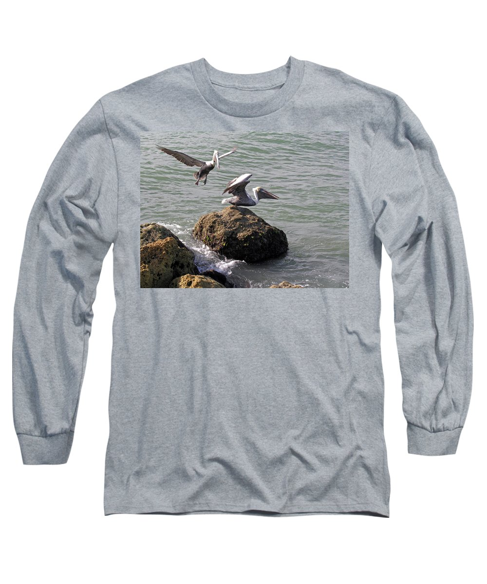 Pelican; Rock; Flying; Ocean; Sea; Bird; Florida; Action; Fight; Confrontation; Green; War; Fishing Long Sleeve T-Shirt featuring the photograph Brown Pelicans In Florida by Allan Hughes