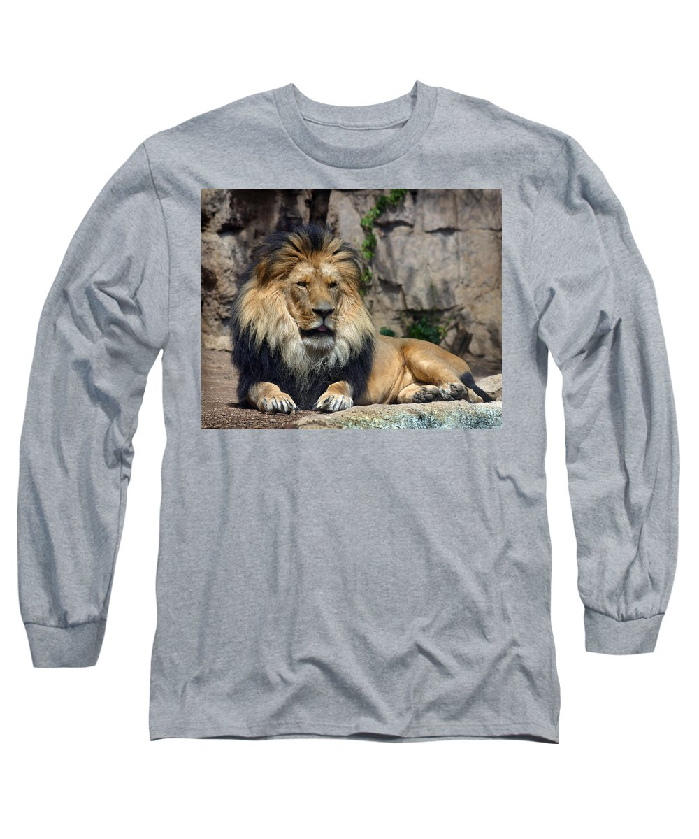 Lion Long Sleeve T-Shirt featuring the photograph Captive Pride by Anthony Jones