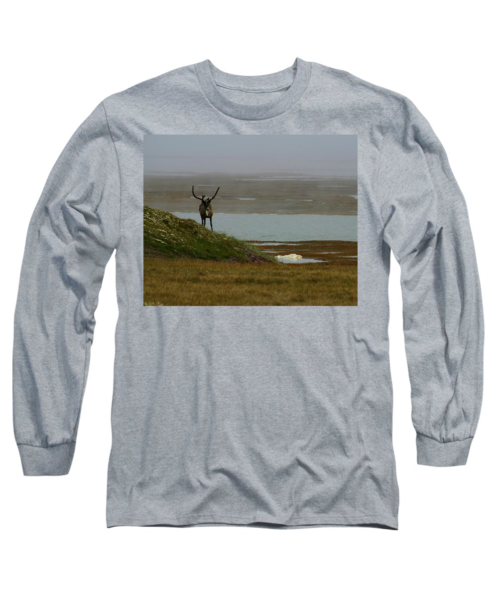 Caribou Long Sleeve T-Shirt featuring the photograph Caribou Fog by Anthony Jones