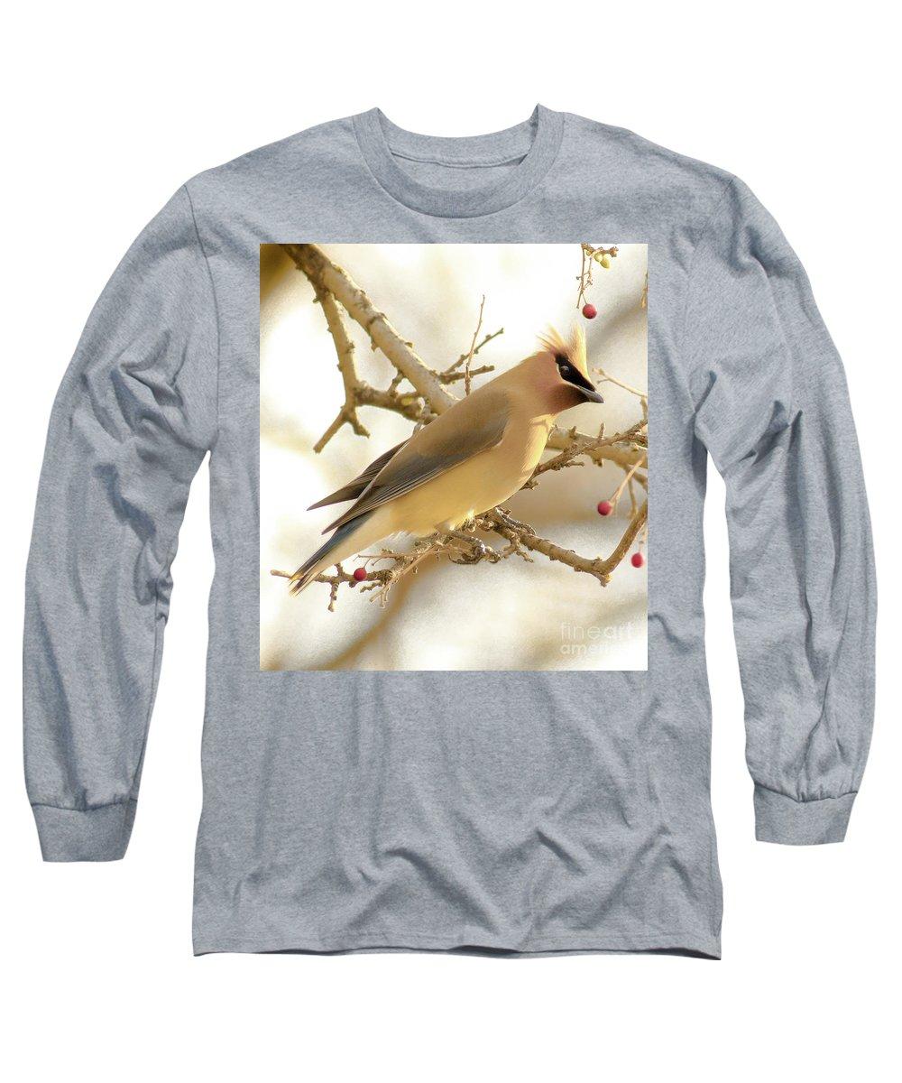 Cedar Waxing Long Sleeve T-Shirts