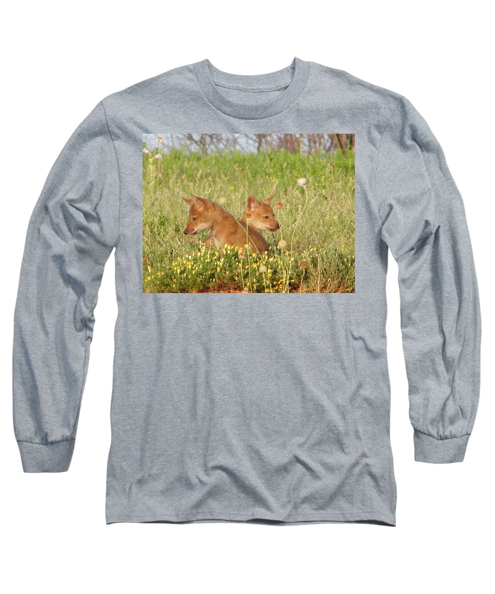 Pup Long Sleeve T-Shirt featuring the photograph Coyote Pups by Gale Cochran-Smith