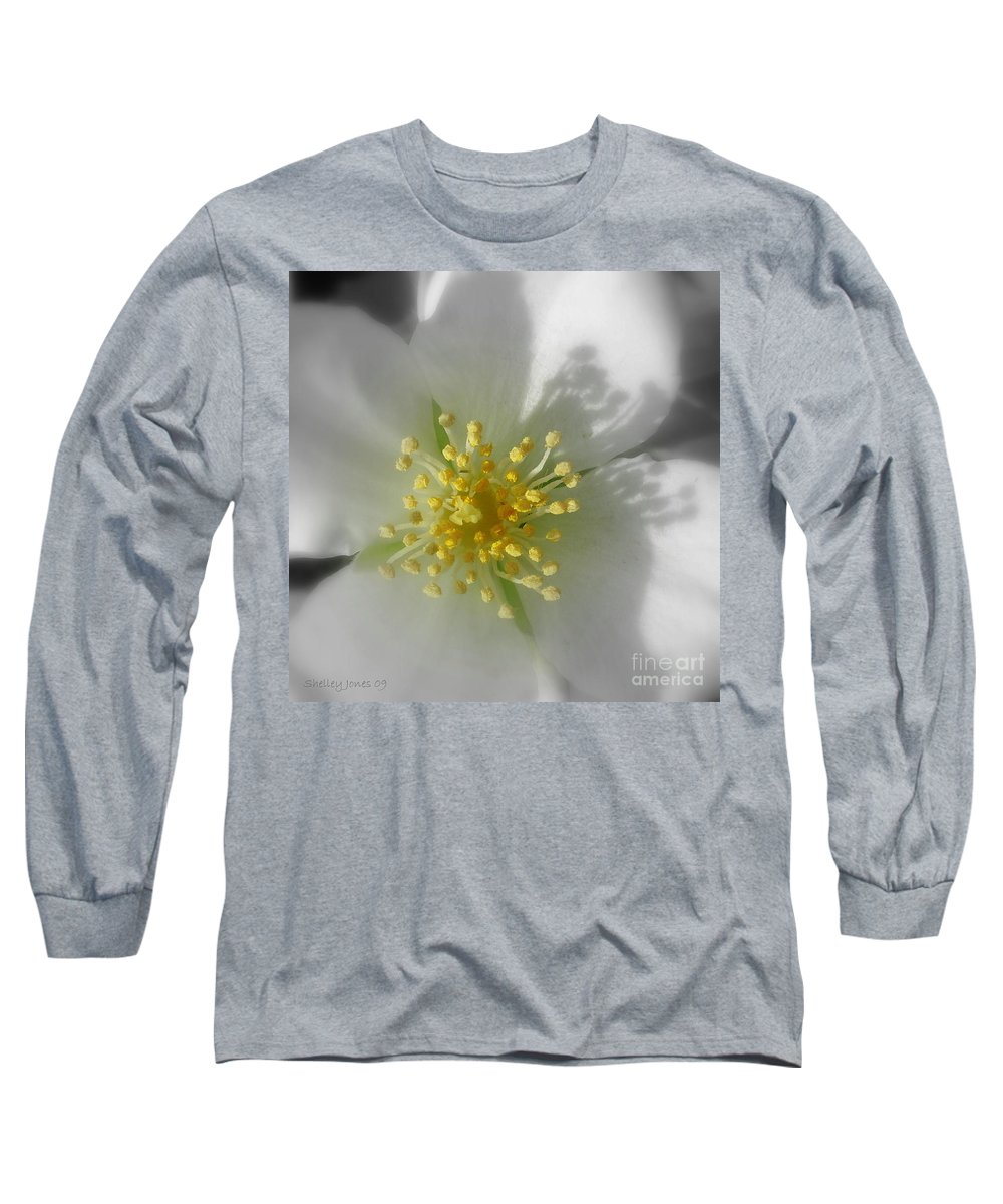 Photography Long Sleeve T-Shirt featuring the photograph Dogwood by Shelley Jones