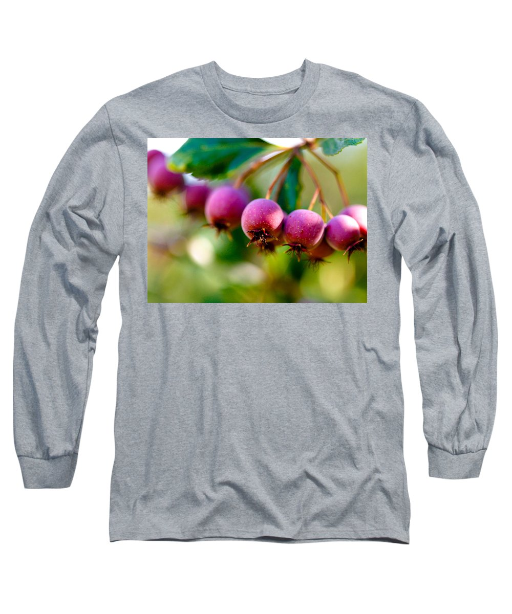 Berry Long Sleeve T-Shirt featuring the photograph Fall Berries by Marilyn Hunt
