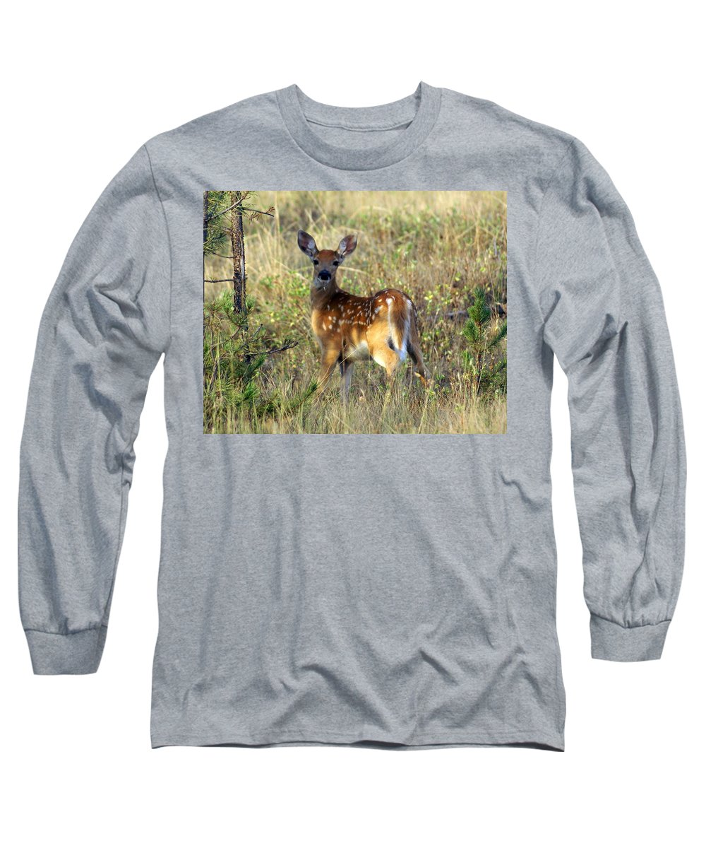 Deer Long Sleeve T-Shirt featuring the photograph Fawn by Marty Koch