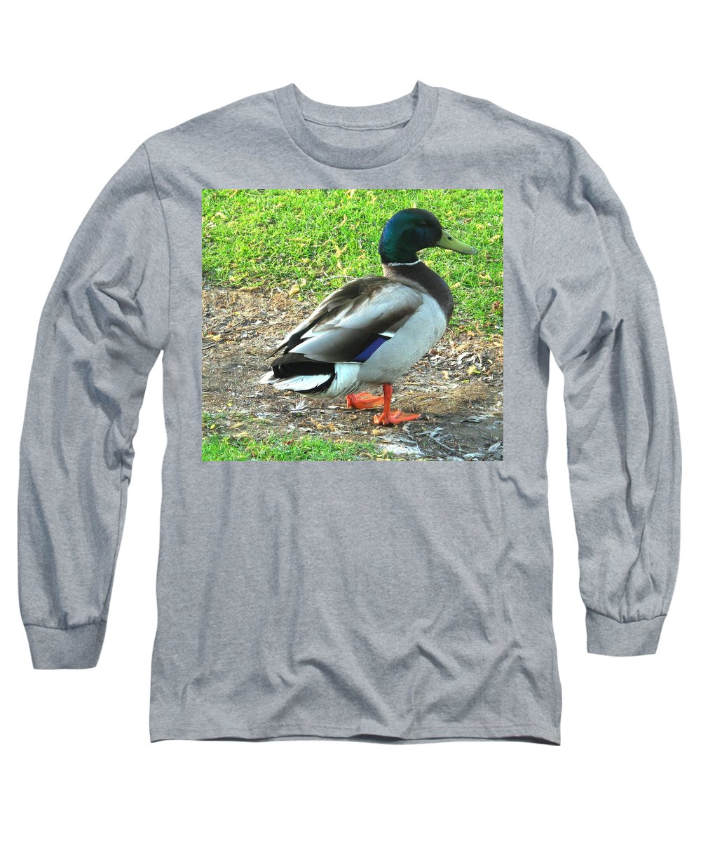 Mallard Long Sleeve T-Shirt featuring the photograph Handsome Fellow by Ian MacDonald