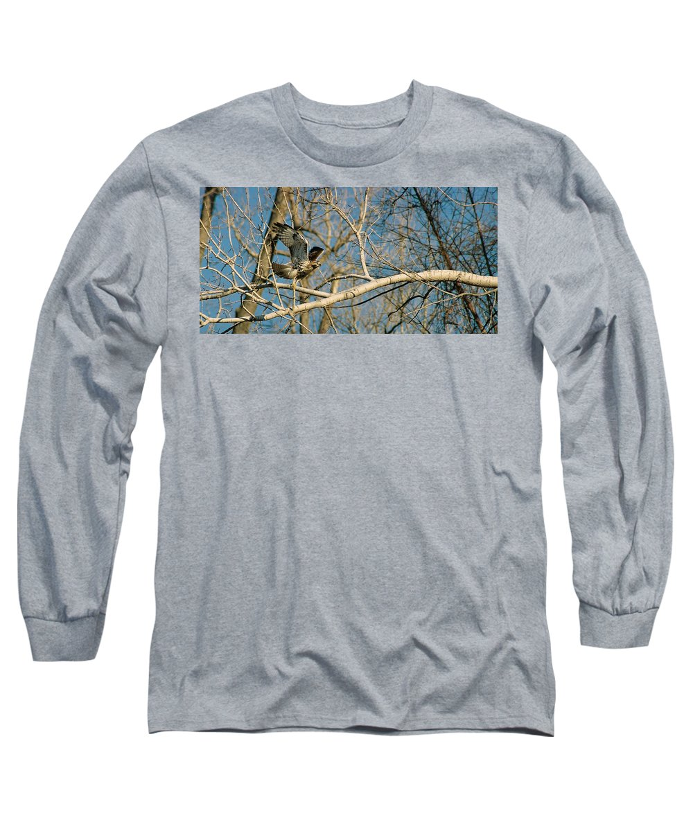 Hawk Long Sleeve T-Shirt featuring the photograph Hawk by Steve Karol