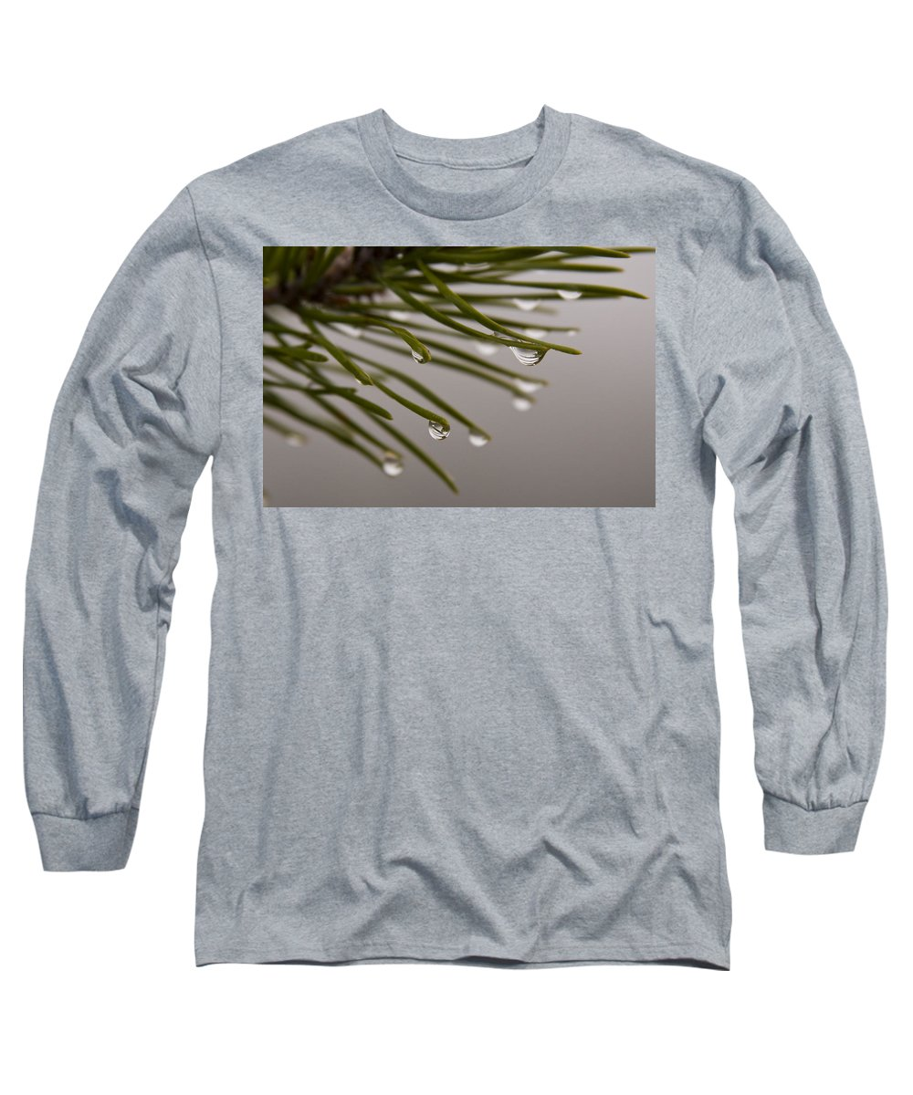 Pine Tree Needle Drop Droplet Reflection Rain Green Fog Foggy Nature Outdoors Hike Long Sleeve T-Shirt featuring the photograph In The Rain by Andrei Shliakhau