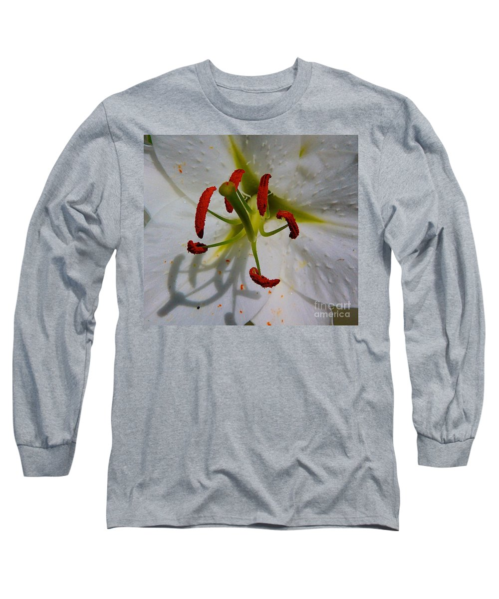 Flower Big Long Sleeve T-Shirt featuring the photograph In The Sun by Robert Pearson