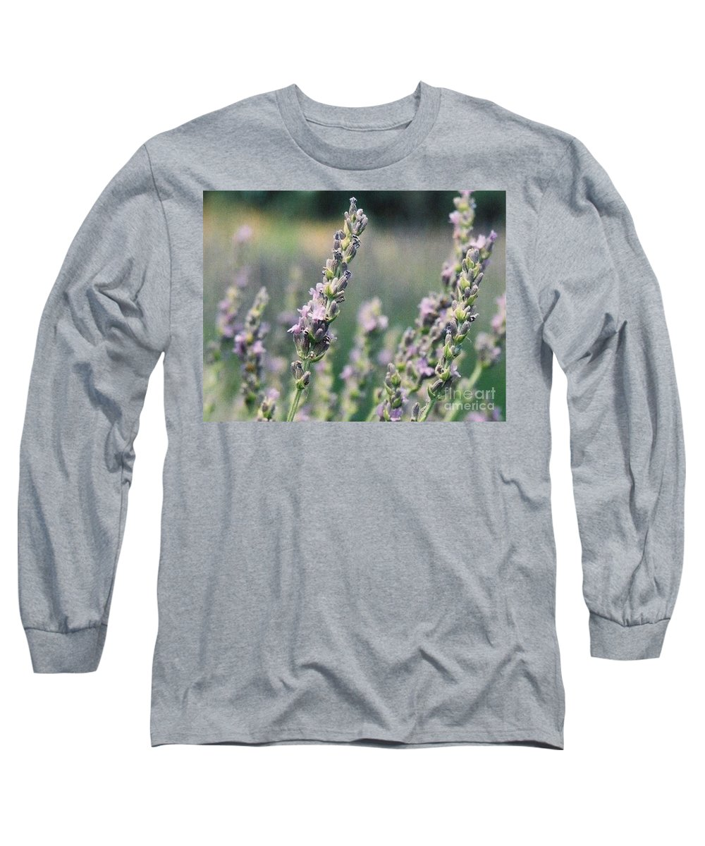 Flowers Long Sleeve T-Shirt featuring the painting Lavender by Eric Schiabor