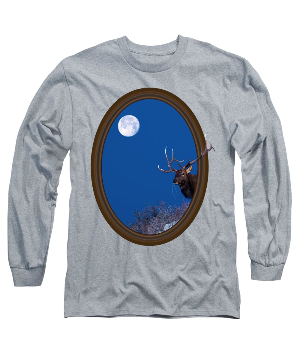 Elk Long Sleeve T-Shirt featuring the photograph Looking Beyond by Shane Bechler