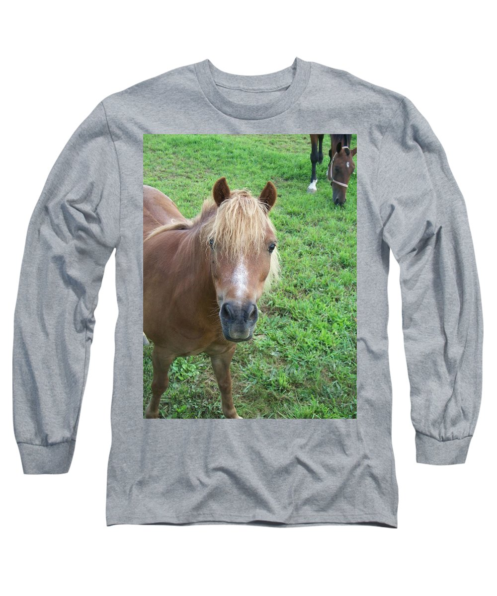Miniture Long Sleeve T-Shirt featuring the painting Miniature Horse by Eric Schiabor