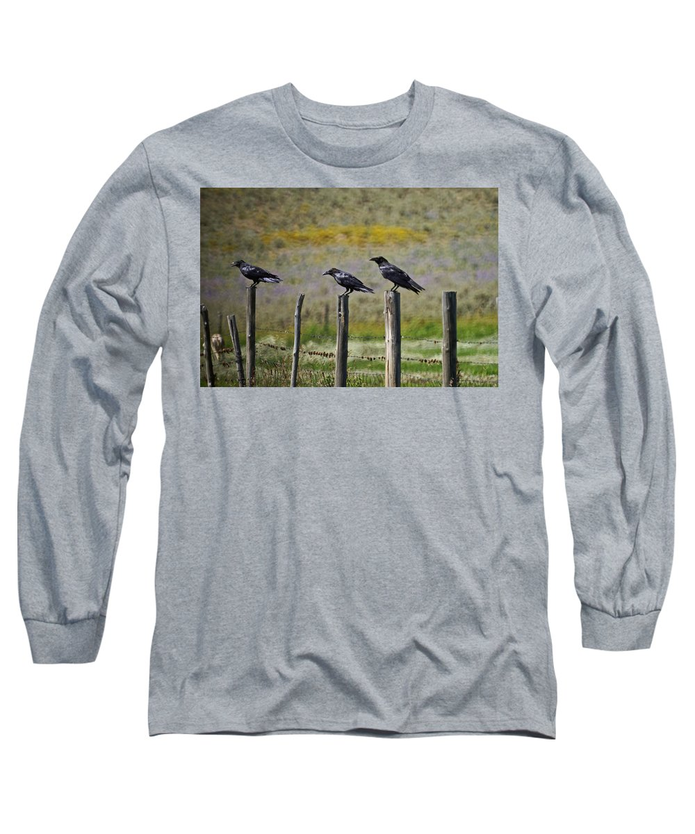 Crows Long Sleeve T-Shirt featuring the photograph Neighborhood Watch Crows by Heather Coen