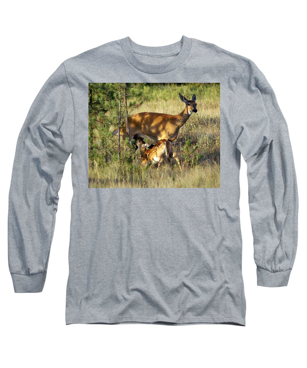 Deer Long Sleeve T-Shirt featuring the photograph Nursing Fawn by Marty Koch