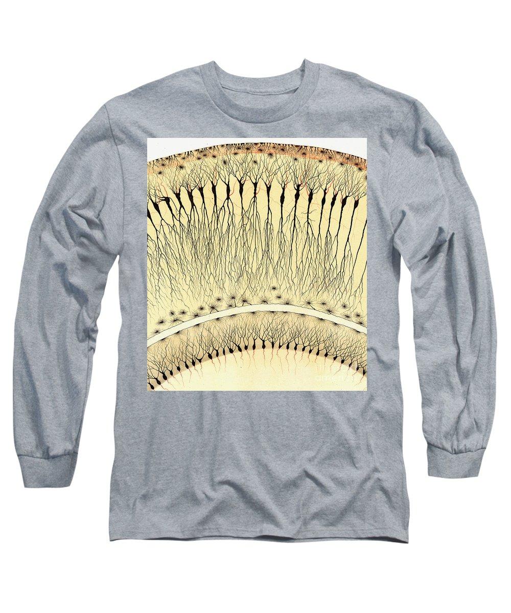 Biological Long Sleeve T-Shirts