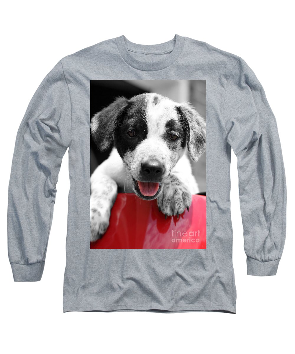Puppy Long Sleeve T-Shirt featuring the photograph Playing by Amanda Barcon