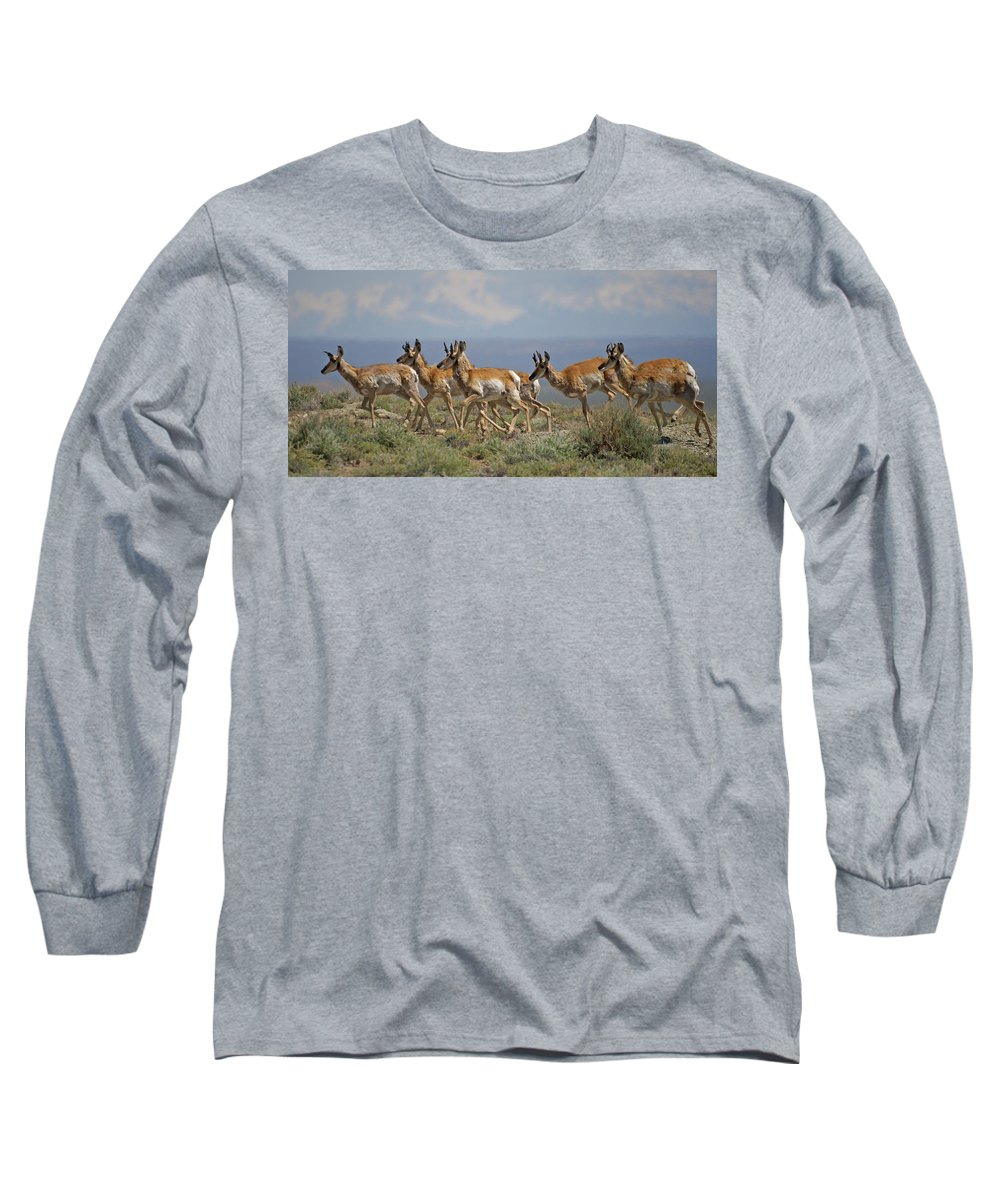 Pronghorn Long Sleeve T-Shirt featuring the photograph Pronghorn Antelope Running by Heather Coen