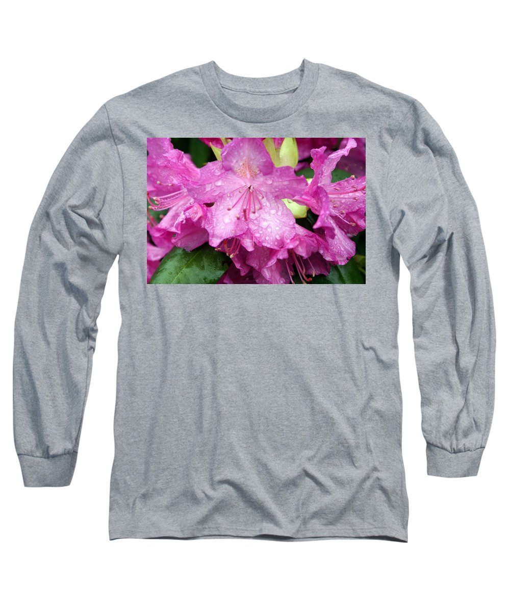 Flowers Long Sleeve T-Shirt featuring the photograph Purple Pink Horizontal by Marty Koch