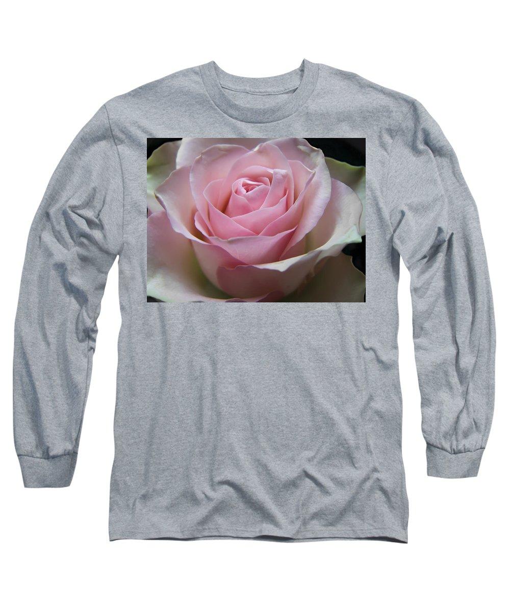 Rose Long Sleeve T-Shirt featuring the photograph Rose by Daniel Csoka